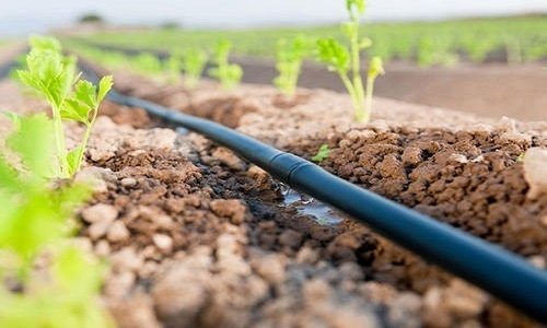 Micro Irrigation in India