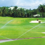 Automation in Landscape Irrigation: One of the prime contributors to the beauty of Landscape